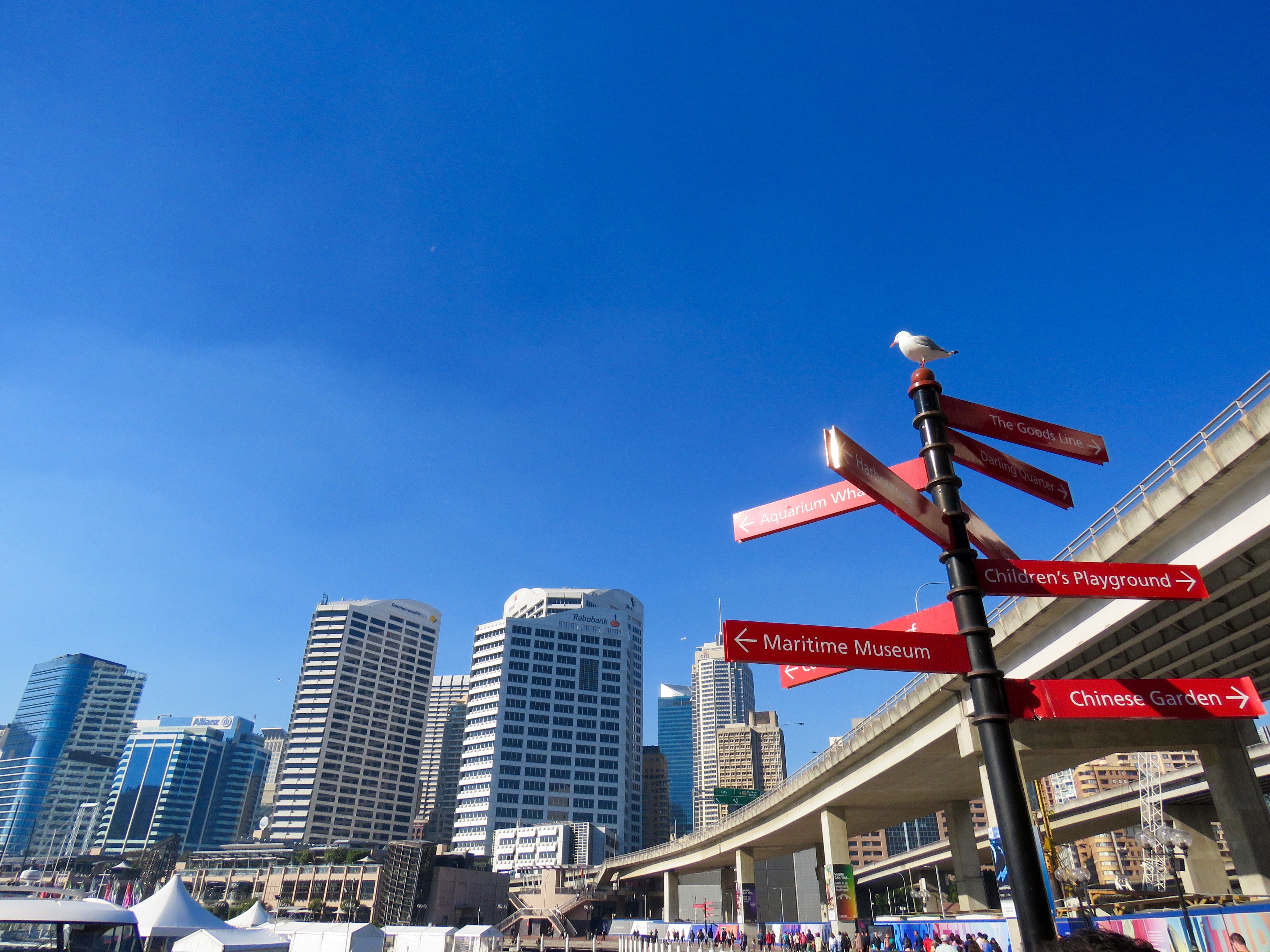 Darling Harbour, Australia, Seagull, Sign