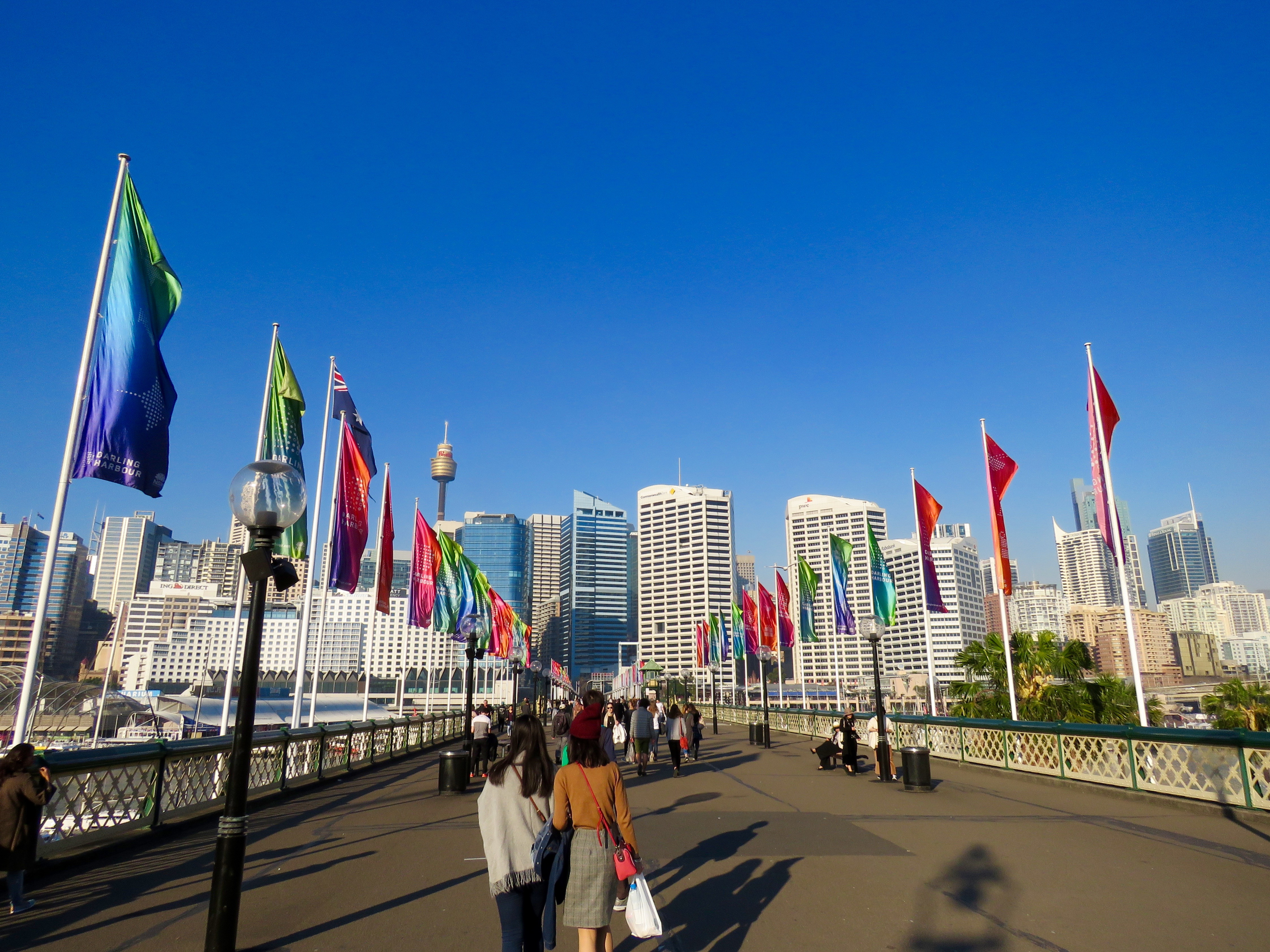 Business District, Darling Harbour, Flags